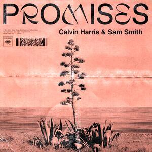 Calvin Harris feat. Sam Smith – Promises