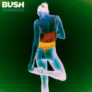 Bush – Flowers On A Grave