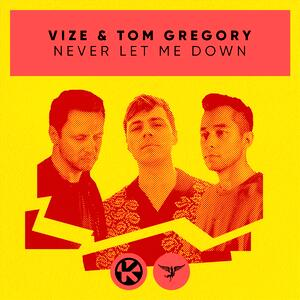VIZE & Tom Gregory – Never Let Me Down